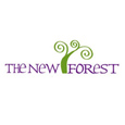 New Forest Official Website